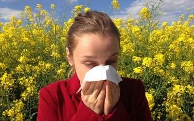 ¿Por qué de repente tengo alergia al polen si nunca tuve?