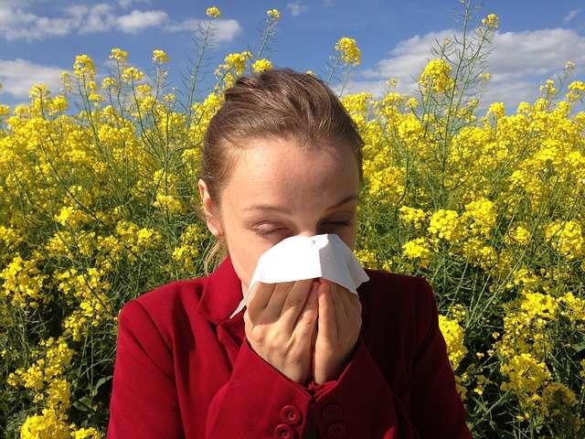 mujer estornudando margaritas alergia