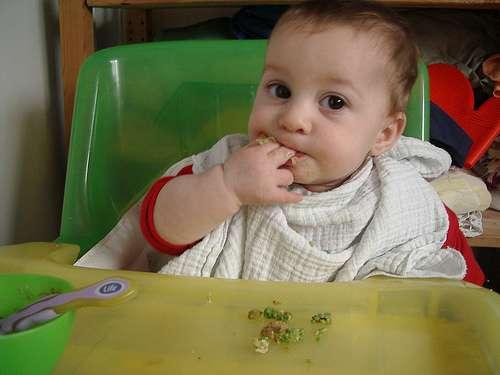 La Autoridad Europea de Seguridad Alimentaria dice que la mayoría de los bebés no necesitan alimentación complementaria hasta los 6 meses