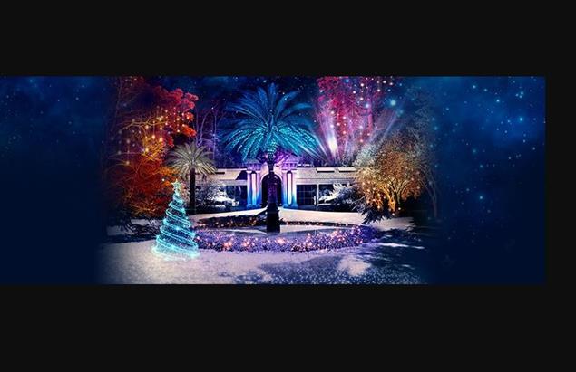 jardín botánico iluminado navidad